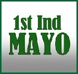 Political innovation in Co Mayo - the 1st Independent Mayo project catches the imagination of the electorate..